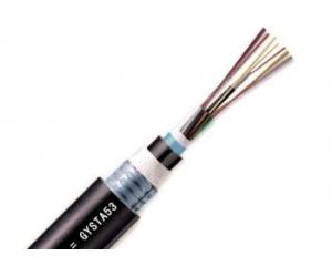 光缆无CE认证标识被退运,可见CE认证的重要性